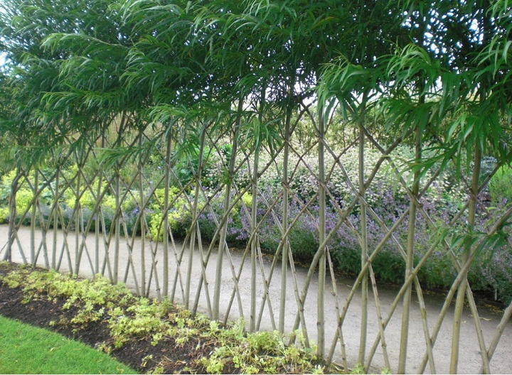 harlow-carr-willow-fence (1).jpg